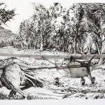 Commissioned Optical Illustration