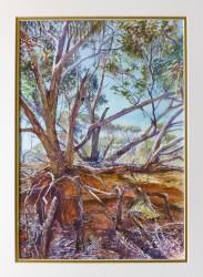 Outback Erosion