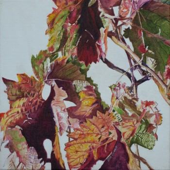 'McLaren Vale Vine Leaves 3': acrylic on canvas, SOLD