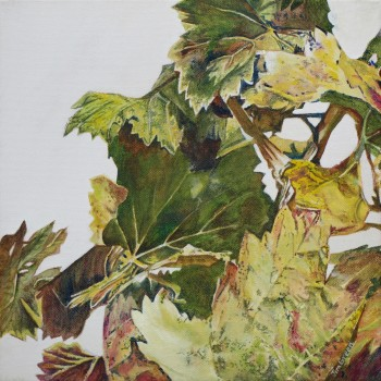 'McLaren Vale Vine Leaves 2': acrylic on canvas, SOLD