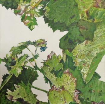 'McLaren Vale Vine leaves 1': Acrylic on canvas, SOLD