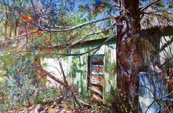 'Abandoned Shed reclaimed'  acrylic on canvas, 750 x 450 mm. SOLD