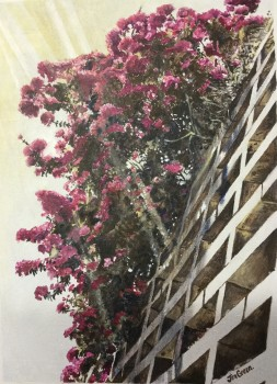 'Bougainvillea in shadow', acrylic on canvas, 400mm x 300mm, SOLD
