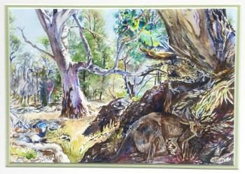New Life at Mambray Creek, SA Watercolour, 400 X 500 framed. SOLD