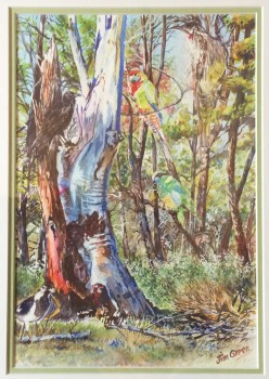Life at Mambray Creek, SA Watercolour: 500 X 400 mm framed. SOLD
