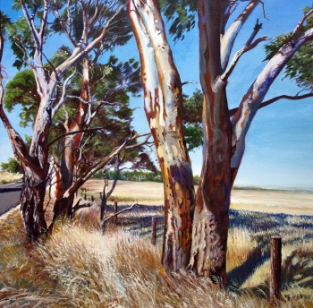 Red Gums , Strathalbyn Road Acrylic on canvas: 600 X 600 mm, SOLD